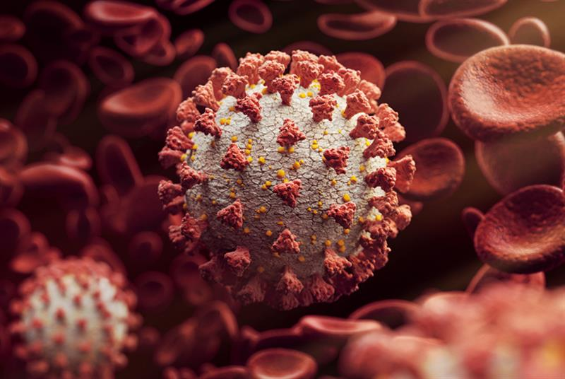 Coronavirus vaccine plans (Photo: Radoslav Zilinsky/Getty Images)