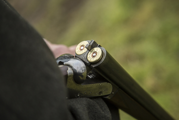Firearms licence changes (Photo: Alex Sharp/Getty Images)