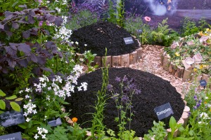Etherlive provided IT services at this year's RHS Chelsea Flower Show