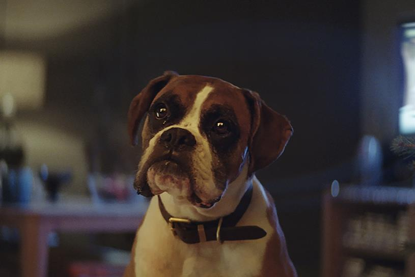 John Lewis' 'Buster the Boxer' Christmas campaign won a gold in the 'retail and restaurants' category