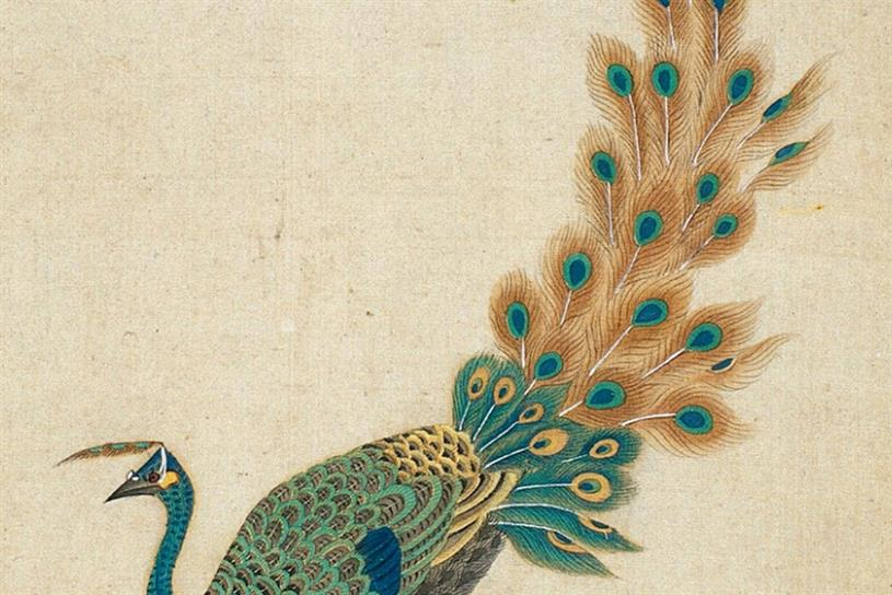 Art Fund: Peacock, from Welcome Collection, features in hunt