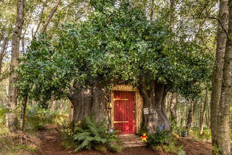 Bearbnb: the house is built with exposed tree branches