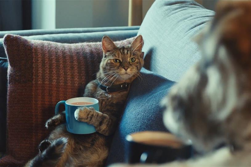 Tetley: Spark44 introduced tea-loving cat Ella