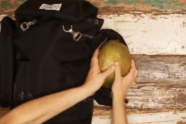 Vita Coco: ditch the coconuts in festival Vine