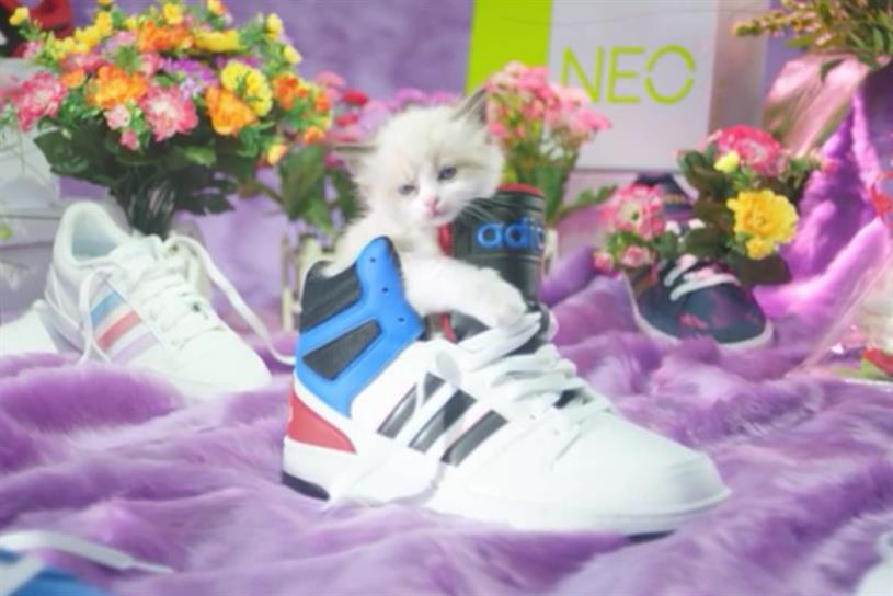 Deichmann's Sneakers und Katzen viral brand video: kittens and sneakers pander to the internet