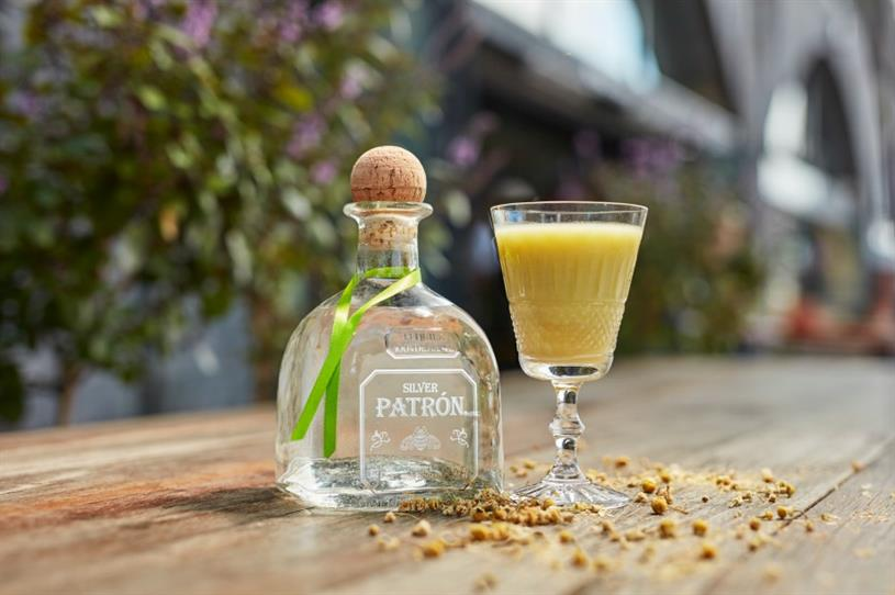 Patron Tequila: hosting cocktail lab