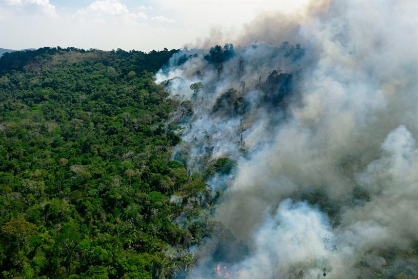 Amazon rainforest: fire in the Brazilian state of Para last August (Photo: Florian Plaucheur/Getty Images)