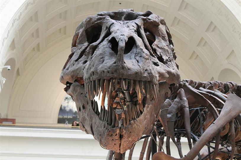 The big six holding companies: will they end up in the Natural History Museum?