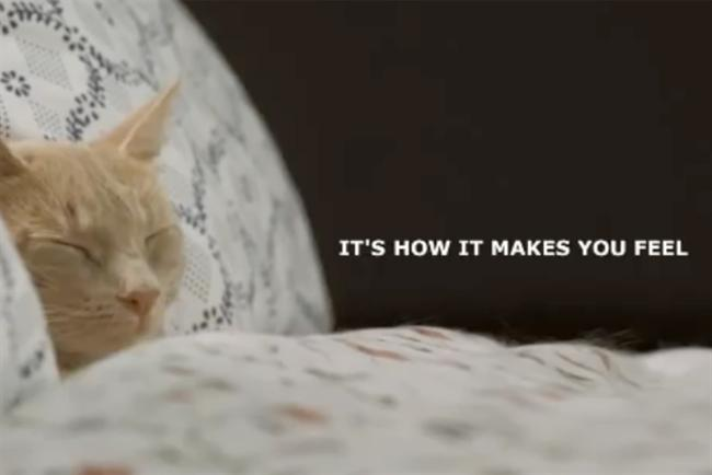"Ikea: 2010 ""Cat"" TV campaign."
