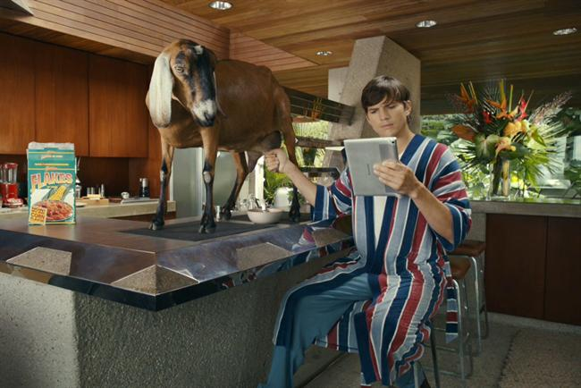 Ashton Kutcher milks a goat for Lenovo.