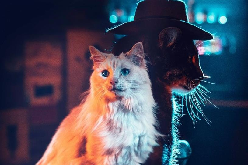 Meow Mix duo Heart & Paws