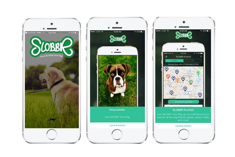 This 5-month-old dog app is snagging partnerships with Shake