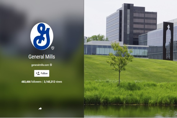 video case 2 general mills warm Warm weather, delicious not surprisingly, general mills brazil mirrors its us counterpart by staying on we were assigned an interactive and challenging case.