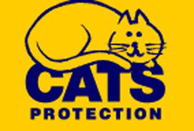 Cats Protection launched an emergency appeal earlier this year