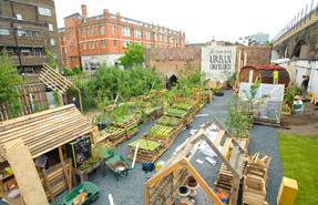 Union Street Urban Orchard in London