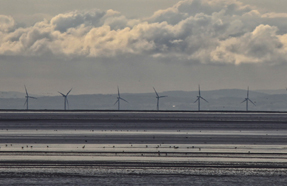 Wind farms: application approval rate hampered by opposition