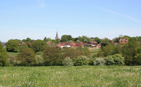 Countryside: studies argue that rural areas should benefit from local planning decisions as these will look to maximise green gains