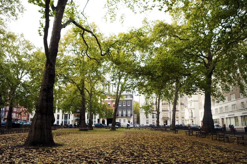 London's Berkeley Square. Pic: Getty Images