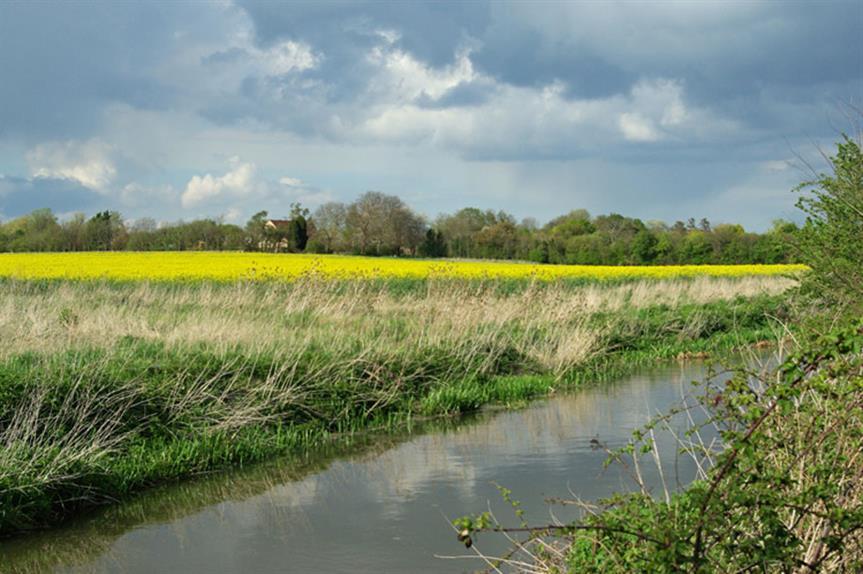 Cambridgeshire: Councils produce draft local plan modifications