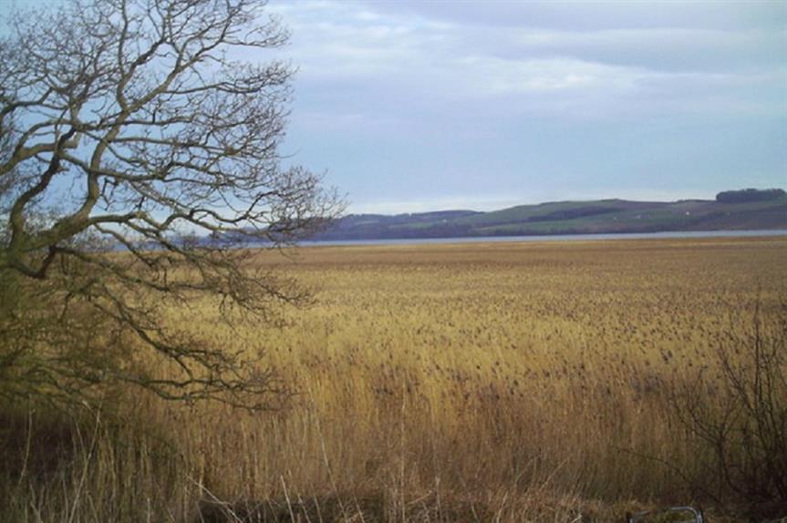 Protected habitat. Pic: Dr Duncan Pepper