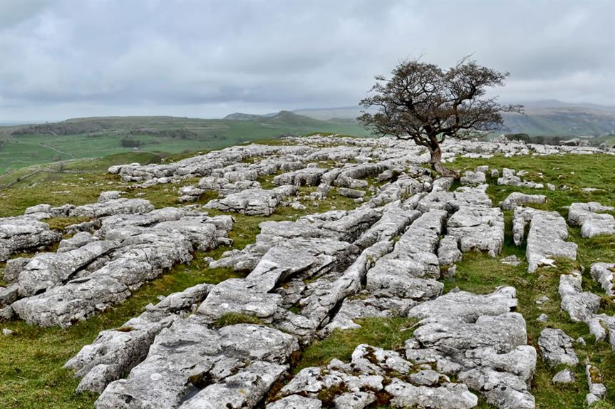 Yorkshire Dales: 'more flexible' local plan in place