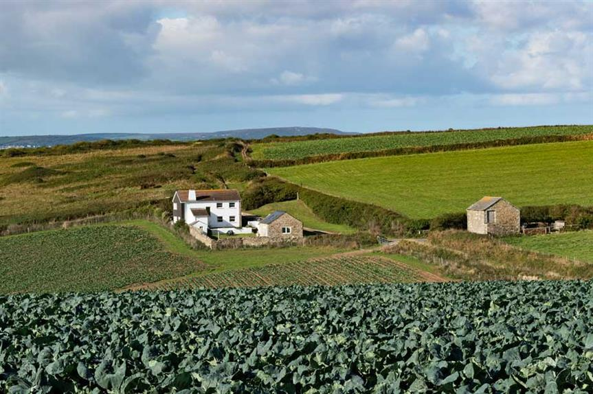The Cornish countryside (Pic: Getty)