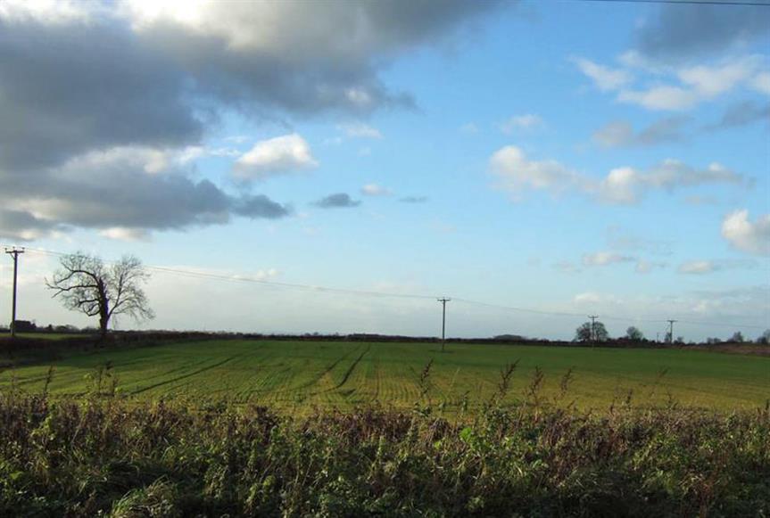 Green belt land. Image by Carl Spencer, Flickr