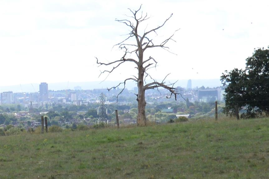London green belt: Report calls for review