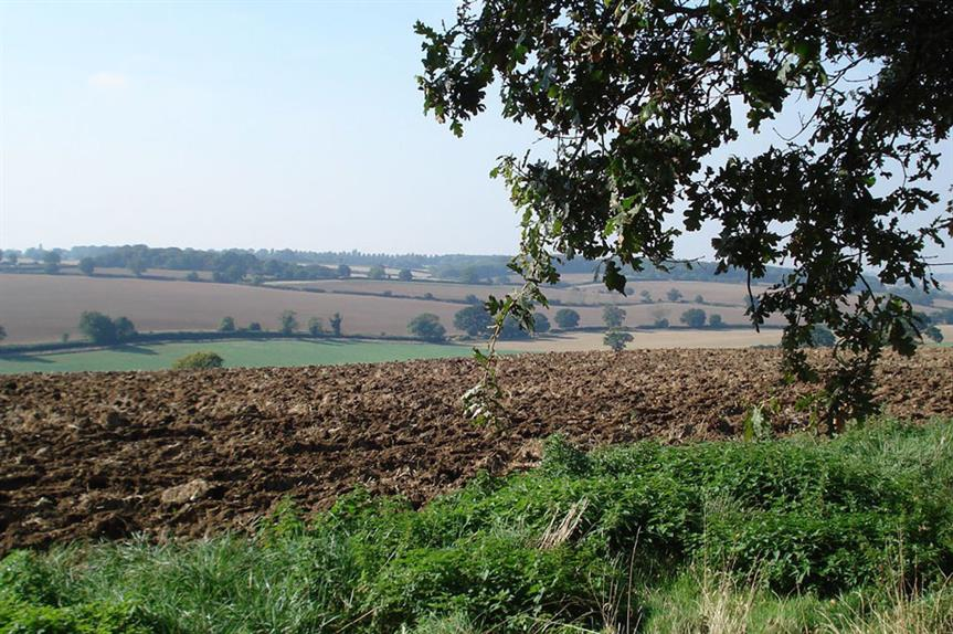Hertfordshire: local plan delay