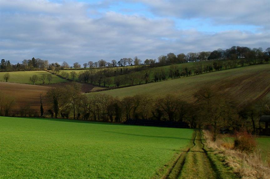 Oxfordshire: council rules out large-scale green belt release