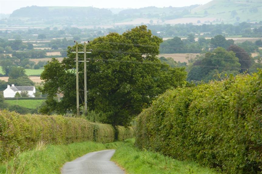 Primrose Lane, Yeovil (pic: Steve Barnes, Geograph)