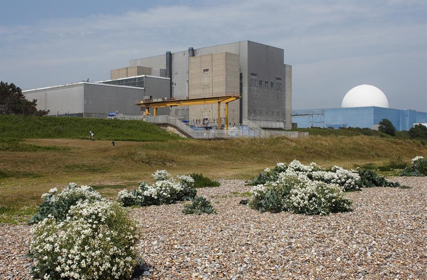 Nuclear: government wants to harness small reactor technology