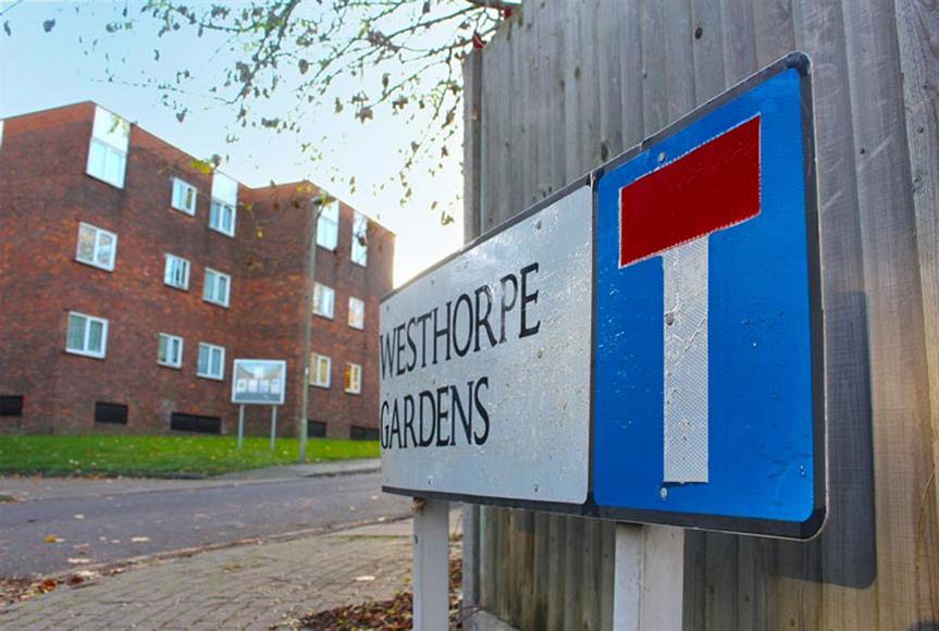 Regeneration plans backed: Westhorpe Gardens and Mills Grove estate in Barnet