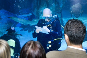 Sea Life London Aquarium hosted the C&IT Agency Forum