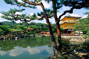 Kyoto Convention Bureau expands team
