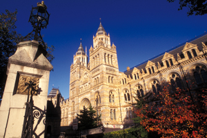 Natural History Museum makes MCM Productions a preferred supplier