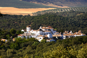 Enter to win luxury trip to Spain