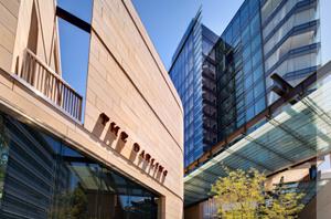 Darling Hotel opens in Sydney