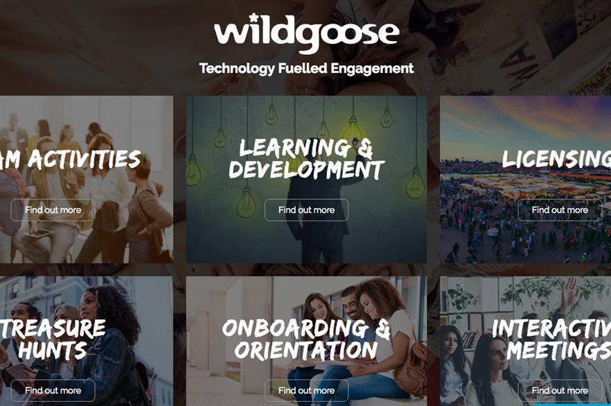 Wildgoose's redesigned website