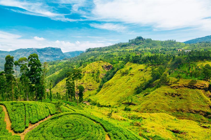 Sri Lanka @istockphoto.com