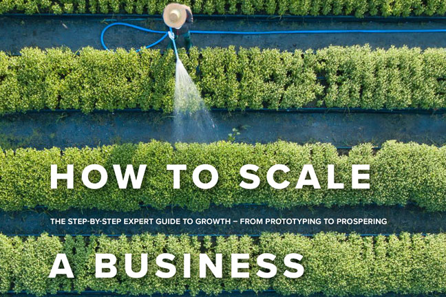 How to scale a business