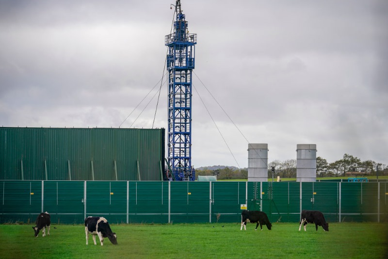 Cattle graze next to the Preston New Road drill site, where fracking has been suspended after it triggered a 2.9 magnitude earthquake. Image: Christopher Furlong / Getty Images