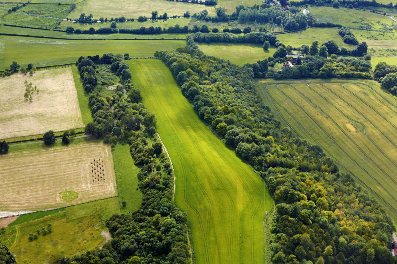 A councillor has resigned over a quashed appeal of plans for a Chilterns AONB 'retirement village'. Photograph: Allan Baxter / Getty Images