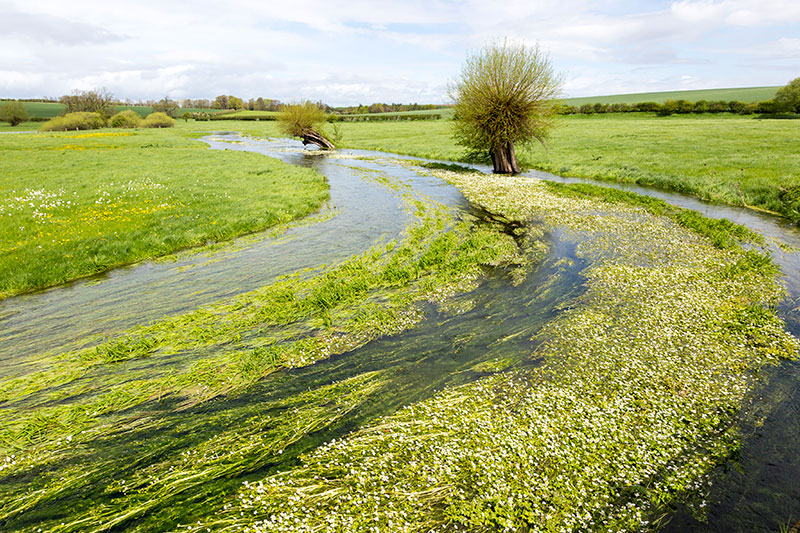 River Till seasonal chalk stream known as a winterbourne, Winterbourne Stoke, Wiltshire. Photograph: Geography Photos/Getty Images