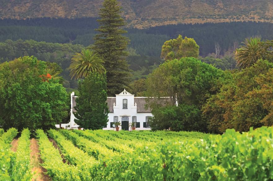 Cape Dutch manor house vineyard, South Africa