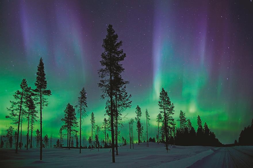 Northern Lights, Northwest Territories, Canada