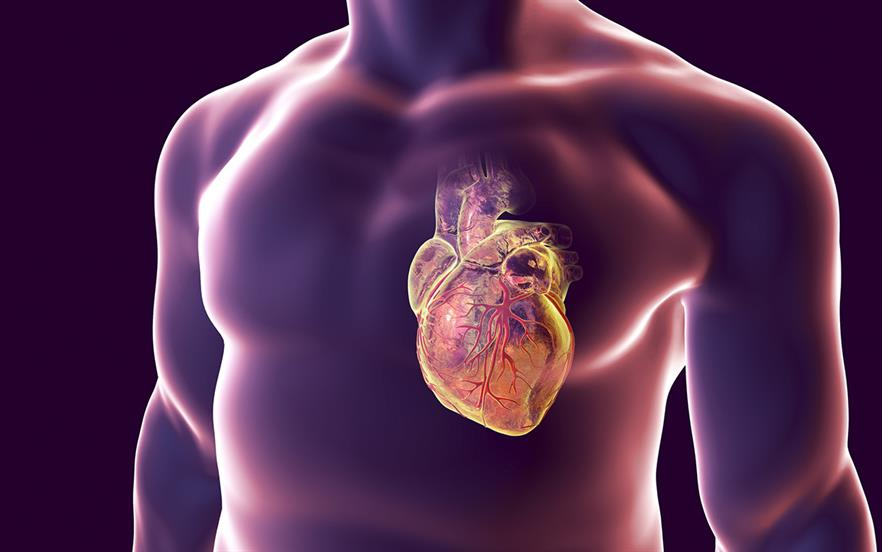 SGLT2 inhibitors have shown beneficial effects in cardiovascular outcomes trials. | GETTY IMAGES