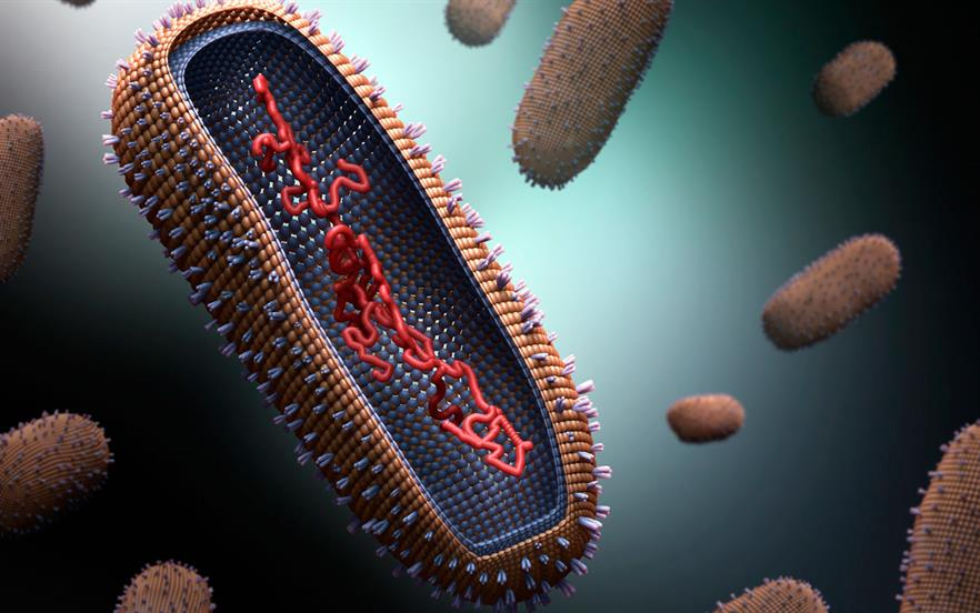 Oseltamivir and zanamivir both inhibit neuraminidase, inhibiting the release of influenza virions from epithelial cells in the respiratory tract | SCIENCE PHOTO LIBRARY