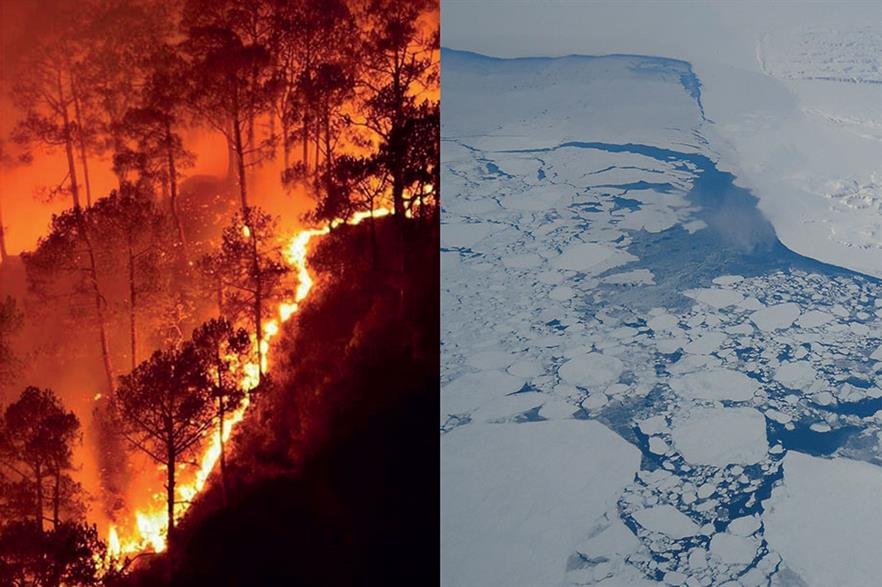 """""""We need to declare a climate emergency""""… Wildfires hit many parts of the world in 2019, from Australia andIndia to Europe and the US, while glaciers are melting (pics Naveen Nkadalaveni/wikimediacommons; Tim Williams/NASA):"""