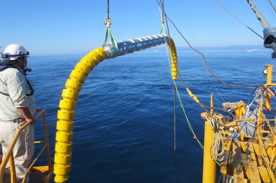 Trelleborg wins contract for Fukushima floating turbine